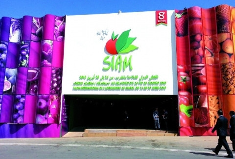 SIAM-2013