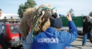mouton Ad Al Adha