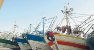 Accord de pêche Maroc-UE Le niet renouvelé du «Collectif pêche»