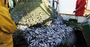Maroc-UE Le nouveau protocole de pêche signé!