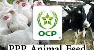 Le PPP, nouvelle alimentation animale