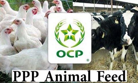 PPP Animal Feed