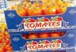 Maroc-UE : «La tomate» marocaine écrasée…