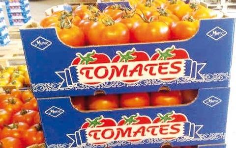 Tomate Marocaine