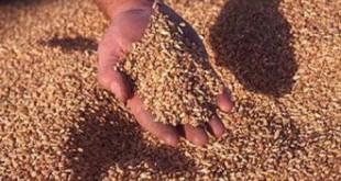 Maroc : Les produits alimentaires plombent la balance commerciale