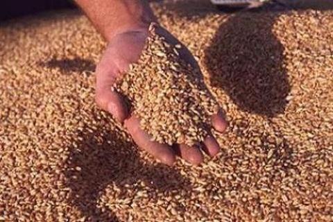 Maroc produits alimentaires