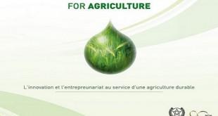 OCP : Mission «Afrique et fertilité des sols»