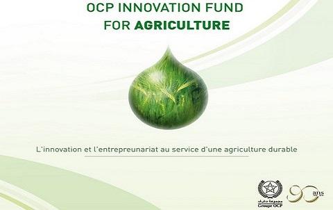 OCP Mission Afrique fertilite