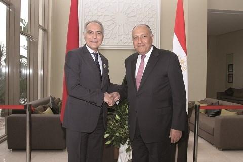 Salaheddine mezouar et Sameh shoukry