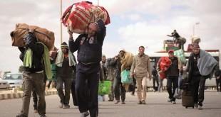 L'exode libyen des Egyptiens