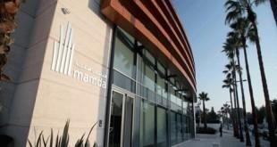 MAMDA : joint-venture et statut CFC