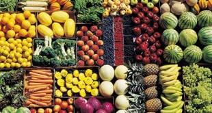 Exportations du Maroc : Les fruits et légumes champions