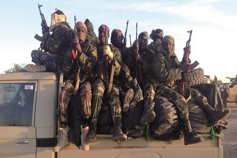 Boko haram milices