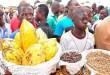 Afrique-OCP : La Caravane-Cacao roule bien