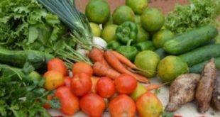 Rabat : Un 1er Salon régional pour les produits agricoles locaux
