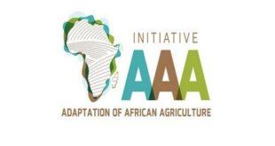 Initiative Triple A : Une réponse aux défis alimentaires de l'Afrique