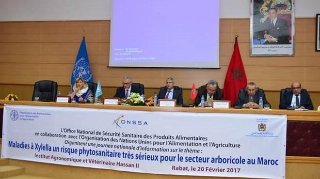 Risques phytosanitaires : L'ONSSA préfère prévenir…