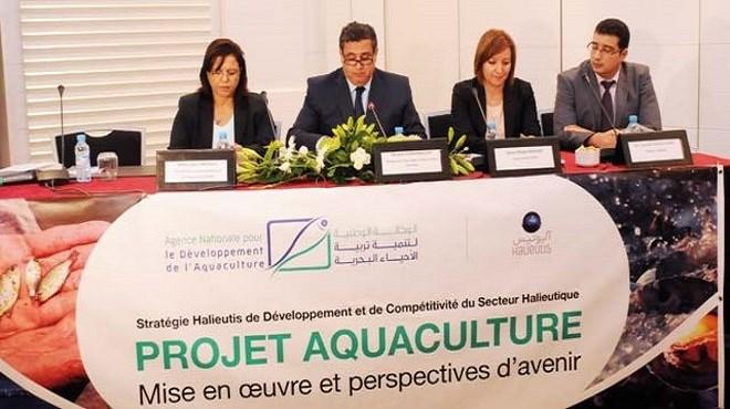 Maroc : Algoculture, relais de croissance de l'aquaculture