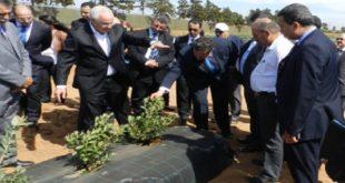 Larache : Des projets agricoles à forte valeur ajoutée
