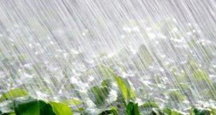 Maroc : Pluie et bonnes perspectives pour la saison agricole 2017