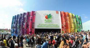 SIAM : Quelle progression ?