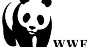WWF : Un réseau maghrébin pour la protection des zones côtières