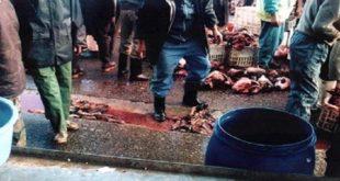 Casablanca-Settat : Abattoirs privés et colère noire des chevillards