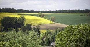 ADA : Plus de 16 milliards aux projets agricoles solidaires