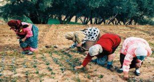 Développement du monde rural : Un programme à horizon 2022 !