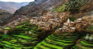 Agriculture : Le Maroc dans le Top 5 africain