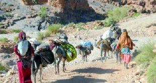 Monde rural : Programme de développement 2016-2022