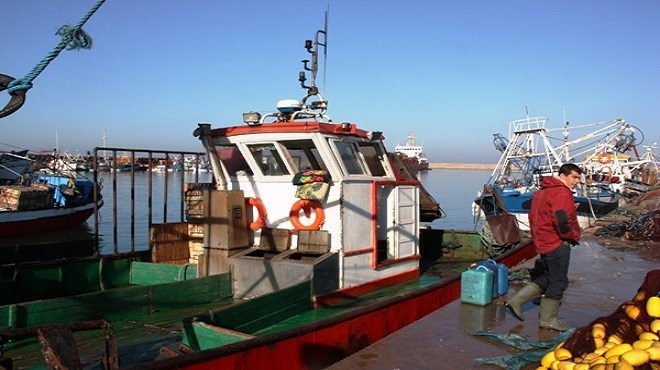 Accord de pêche Maroc-UE : Le lobby espagnol affûte ses armes