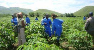 RDC-Maroc : Pour une coopération bénéfique