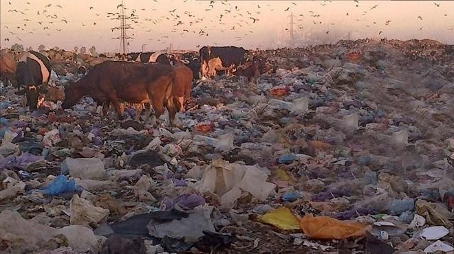 Décharge de Médiouna : La guerre des ordures se corse !