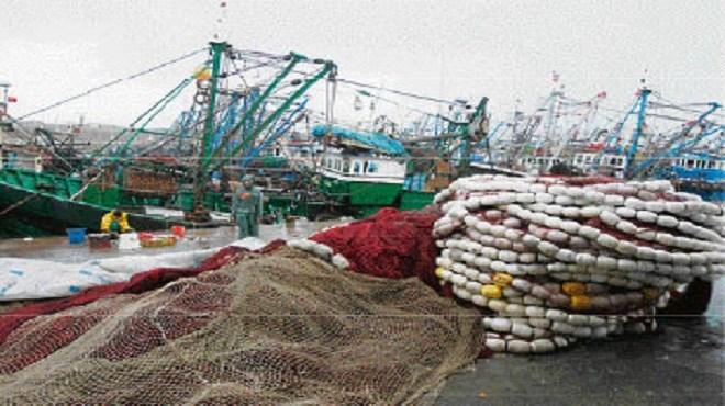 Maroc/Pêche artisanale : Un appel d'offres pour des caissons isothermes