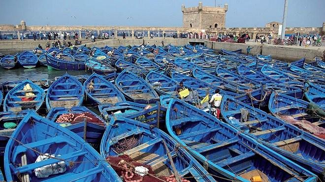 Pêche maritime : Le projet des «puces électroniques» est-il légal ?