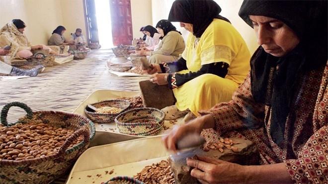 Coopératives marocaines et femme agricultrice africaine