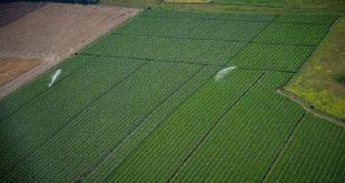 Fès-Meknès : Les perspectives de l'agriculture durable