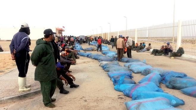 Pêche maritime : Une solution pour combattre la pêche illégale ?