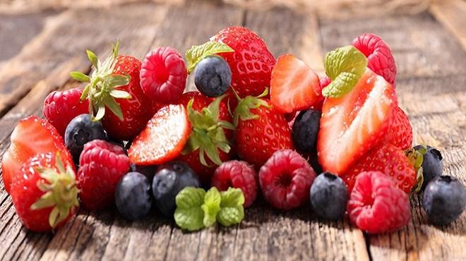 Petits fruits rouges : 80% de la production de la filière dans le périmètre du Loukkos