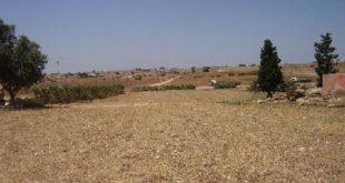 Décret : Cession de terrains agricoles