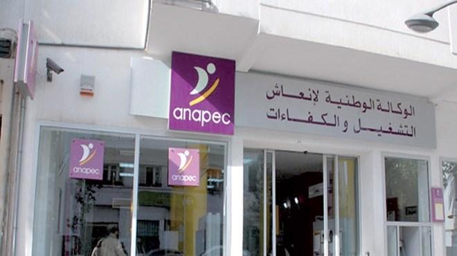 Emploi : L'ANAPEC préside l'AMSEP