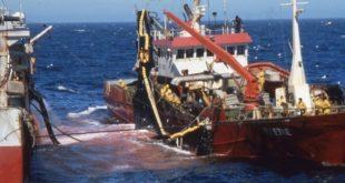 Pêche/Maroc : Un nouvel opérateur pour le Système de localisation des bateaux
