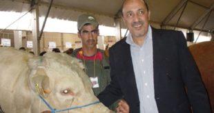M'Hammed Karimine, Président de la Fédération interprofessionnelle des viandes rouges (FIVIAR)