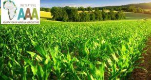 Agriculture : L'initiative «Triple A» présentée à Budapest