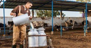 COMADER : La filière laitière au centre des travaux de l'AG