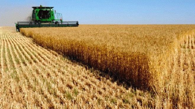 GCAM : Une ligne de financement des Coopératives Agricoles