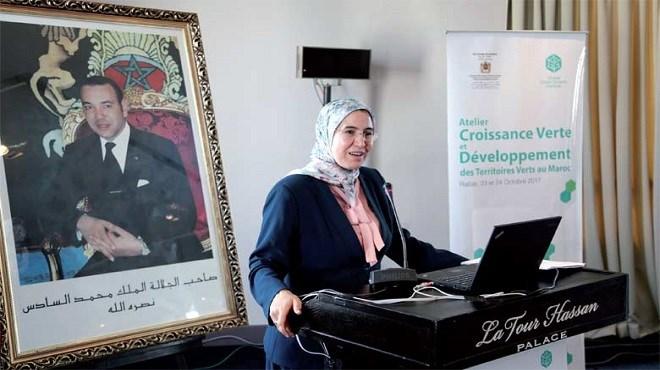 Maroc/Déchets collectés : Croissance et stratégie d'El Ouafi