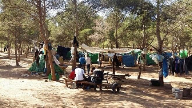 Reportage : De quoi rêvent les migrants dans la forêt de Nador ?