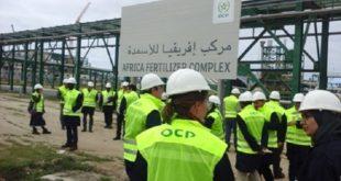 OCP : Les professionnels des engrais dans nos murs